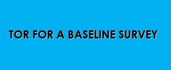 TOR BASELINE SURVEY – MWANAMKE IMARA PROJECT